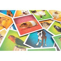 Memory Matching Game: Pets