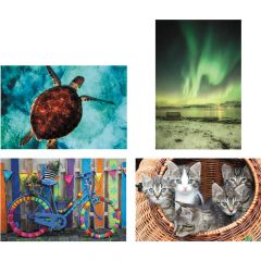 Thera-Jigstick™ Puzzle Set: Bike, Kittens, Northern Lights & Sea Turtle