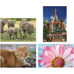Thera-Jigstick™ Puzzle Set: Cat, Elephants, Daisy and Russian Cathedral